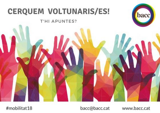 Cerquem voluntaris/es – Participa!